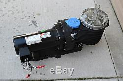 Dayton 5PXF1A In-Ground Pool Spa Pump 3-Phase LOCAL PICKUP NORTH OF DENVER, CO